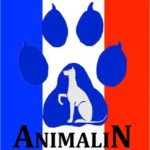 Animalin Catherine Collignon Clicker training