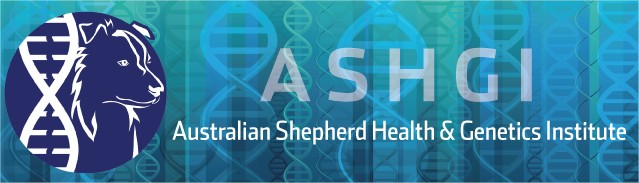 Australian Sheperd Health & Genetics Institute